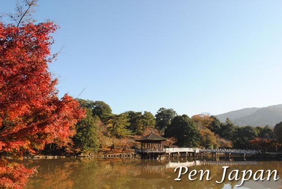 奈良公園_浮見堂の紅葉
