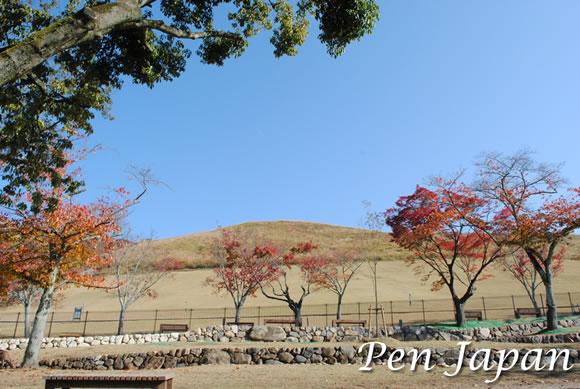 奈良公園_若草山の全景