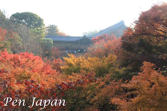 東福寺_通天橋と紅葉