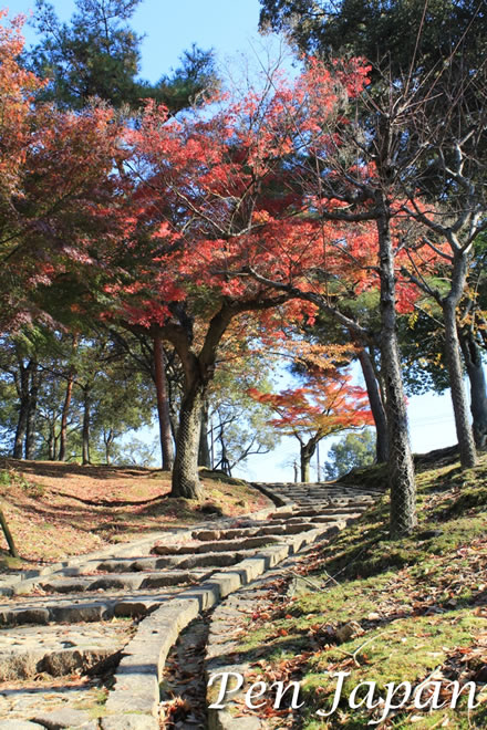 奈良公園の紅葉(浮見堂の近く)