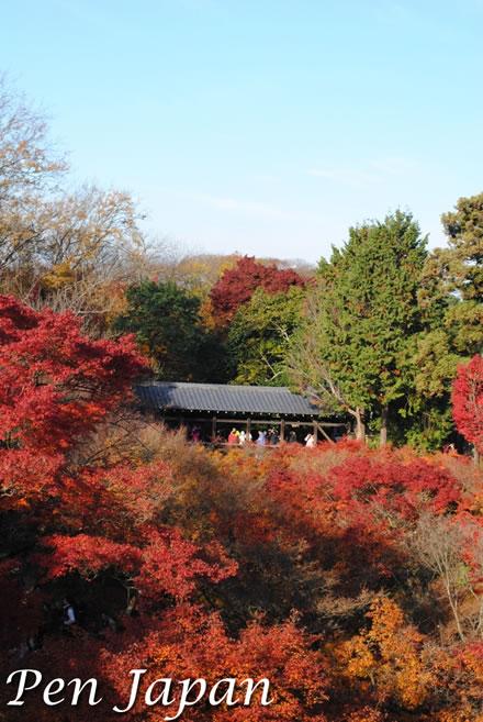 東福寺_臥雲橋と紅葉