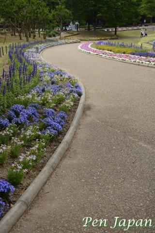 長居植物園の初夏の花