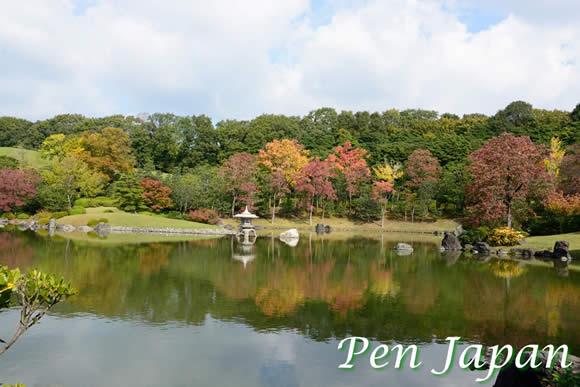 万博記念公園の紅葉