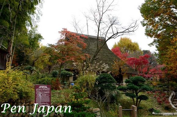 日本民家集落博物館と紅葉
